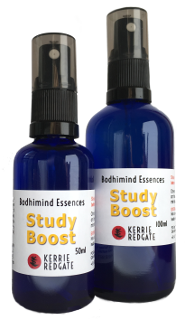Study Boost formula bottles 50ml and 100ml
